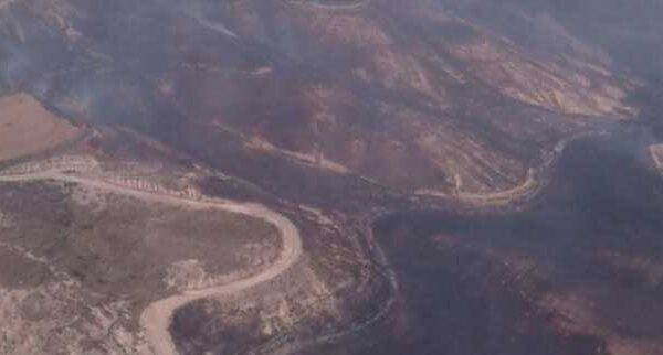 Incendio forestal en Almudévar